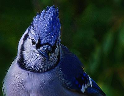 Blue Jay Digital Art - Blue Jay Digital Art by Ernie Echols