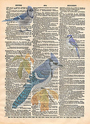 Bluejay Mixed Media - Blue Jay Expire by Marcus  Jules