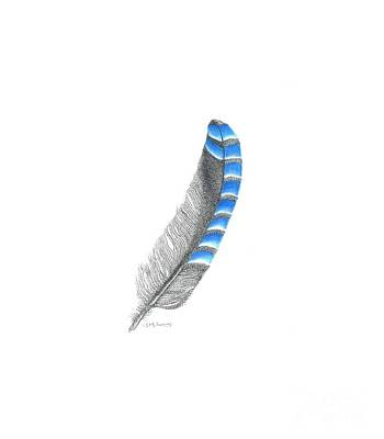 Bluejay Mixed Media - Blue Jay Feather by Jane Lucas
