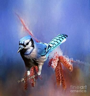 Digital Art - Blue Jay Hop by Suzanne Handel