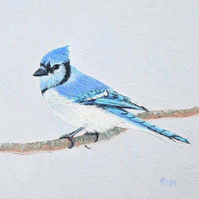Bluejay Painting - Blue Jay by Jan Matson