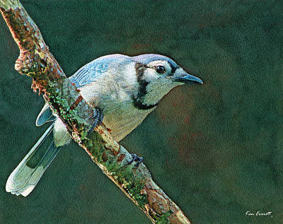 Blue Jay Painting - Blue Jay by Ken Everett