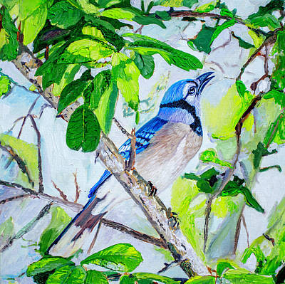Painting - Blue Jay by Manuel Lopez