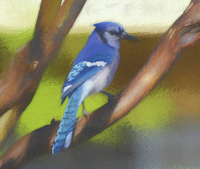 Outdoor Painting - Blue Jay On Tree Brach by Garland Johnson