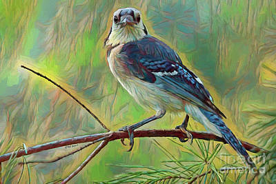 Painting - Blue Jay Painterly Beauty by Deborah Benoit