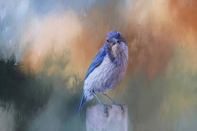 Bluejay Mixed Media - Blue Jay Visit by Terry Davis