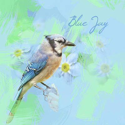 Print featuring the photograph Blue Jay Watercolor Photo by Heidi Hermes