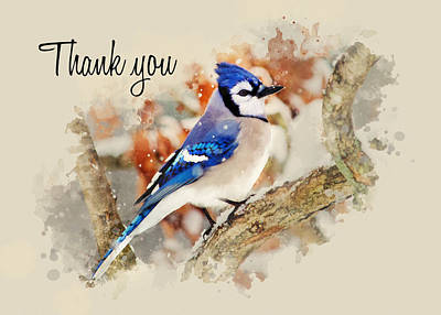 Bluejay Mixed Media - Blue Jay Watercolor Thank You Card by Christina Rollo