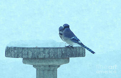 Bluejay Digital Art - Blue Jays Winter Feeding Painterly by Jennifer White