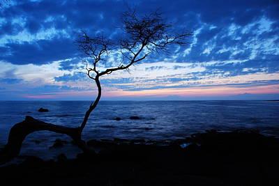Mountain Landscape - Blue Kona by Kelly Wade