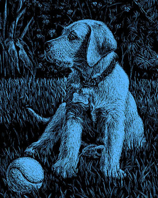 Painting - Blue Labrador Puppy Dog by Irina Sztukowski