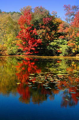Fall Photograph - Blue Lagoon by Emily Stauring