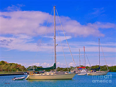 Photograph - Blue Lagoon by Judy Kay