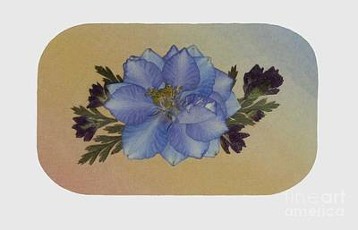 Blue Larkspur And Oregano Pressed Flower Arrangement Art Print