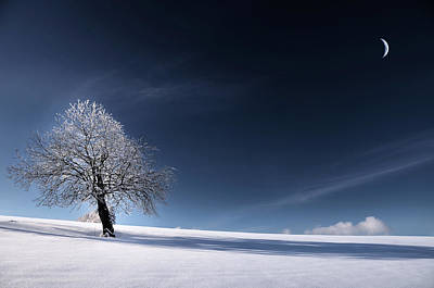 Art Print featuring the photograph Blue Like Snow by Philippe Sainte-Laudy