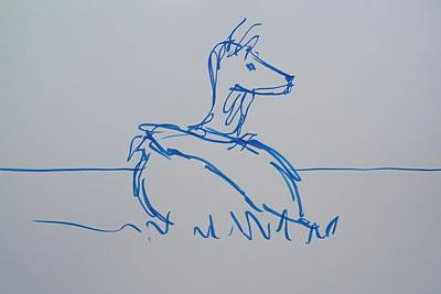 Drawing - Blue Line Drawing Of A Deer Lying Down by Mike Jory