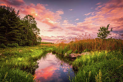Photograph - Blue Marsh by Kim Carpentier