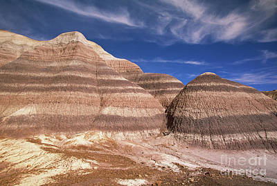 Petrified Forest Arizona Photograph - Blue Mesa Arizona by Yva Momatiuk and John Eastcott