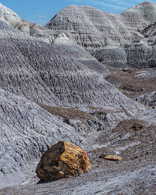 Petrified Forest Arizona Photograph - Blue Mesa by Joseph Smith