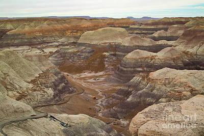 Photograph - Blue Mesa, Petrified Forest  8b9255l by Stephen Parker