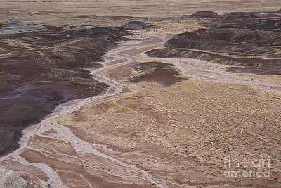 Photograph - Blue Mesa, Petrified Forest  A9219l by Stephen Parker