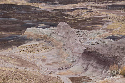 Photograph - Blue Mesa, Petrified Forest  A9220l by Stephen Parker