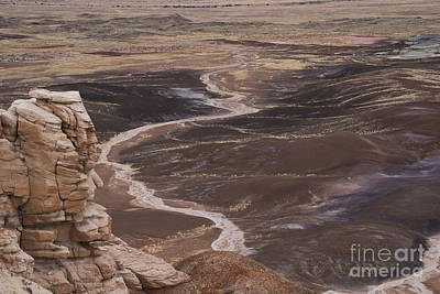 Photograph - Blue Mesa, Petrified Forest  A9224l by Stephen Parker