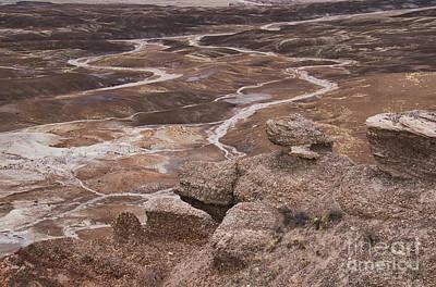 Photograph - Blue Mesa, Petrified Forest  A9231l by Stephen Parker