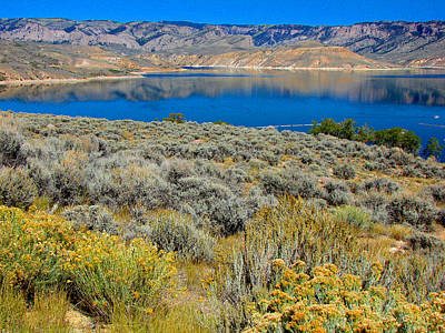 Photograph - Blue Mesa Reservoir 1 by Diana Douglass
