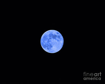Lunation Photograph - Blue Moon by Al Powell Photography USA