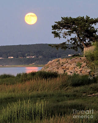 Photograph - Blue Moon  by Janice Drew