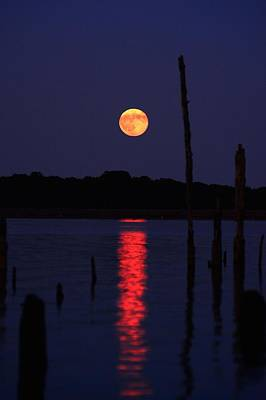 Photograph - Blue Moon by Raymond Salani III
