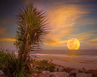 Photograph - Blue Moon Rising On St. Simons by Chris Bordeleau