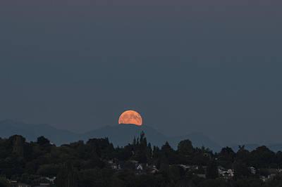 Photograph - Blue Moon.1 by E Faithe Lester