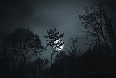 Photograph - Blue Moon by Terence Davis