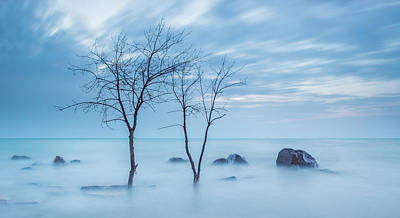 Photograph - Blue Morning by Dave Chandre