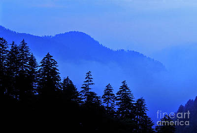 Art Print featuring the photograph Blue Morning - Fs000064 by Daniel Dempster