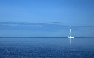 Mauverneen Blevins Photograph - Blue Morning by Mauverneen Blevins