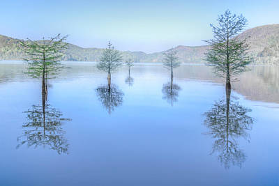 Photograph - Blue Morning On The Lake by Debra and Dave Vanderlaan