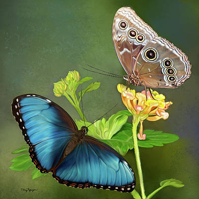 Blue Morpho  Butterflies Art Print by Thanh Thuy Nguyen