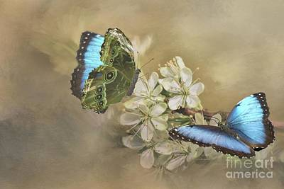 Digital Art - Blue Morpho In Spring by Janette Boyd