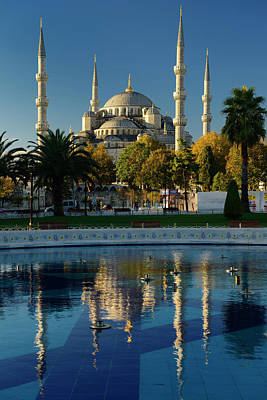 Palm Trees Photograph - Blue Mosque In Early Morning Sun With Reflection In Pool Istanbu by Reimar Gaertner
