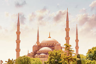 Photograph - Blue Mosque Of Istanbul by Anna Om