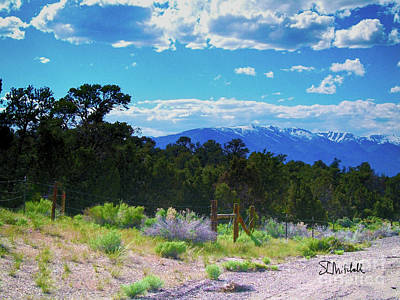 Photograph - Blue Mountain West by Stephen Mitchell