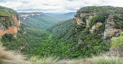 Photograph - Blue Mountains 2 by Werner Padarin