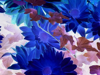 Photograph - Blue Mums With Purple Ivy by Karen J Shine