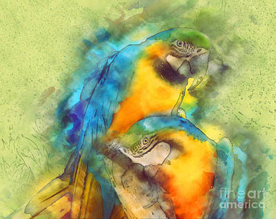 Painting - Blue N Gold Macaws by Methune Hively