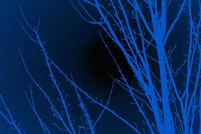Spooky Digital Art - Blue Night by Art Spectrum