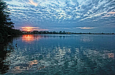 Photograph - Blue On Blue by HH Photography of Florida