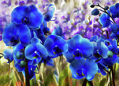 Digital Art - Blue Orchid Garden Wall Art by Georgiana Romanovna